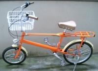 娘が買ってきた小径車