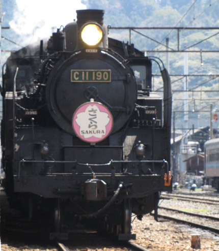 大井川鉄道C11