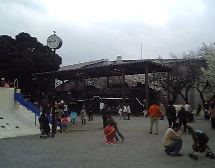 飛鳥山公園SL