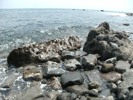 大崩海岸を歩く