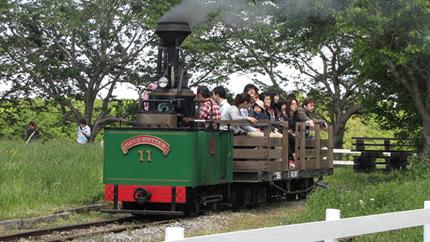 まきば線11号機関車