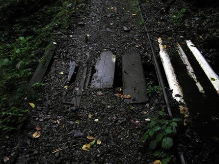 入川・渡り板
