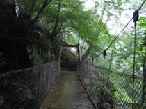入川・吊橋