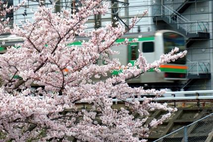 JR五反田の目黒川