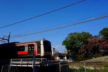菊名桜山公園 東横線
