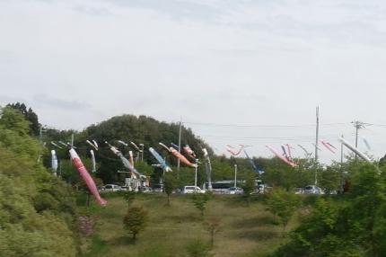 成田さくら山公園