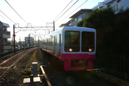ピンクの新京成
