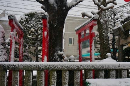 雪の東急大井町線と東横線