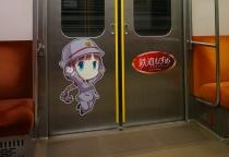 元東急の8500系 鉄道むすめ朝陽さくら