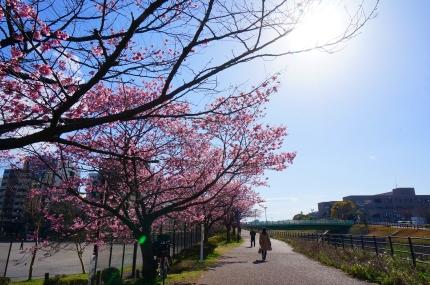JR横浜線 新横浜駅あたり