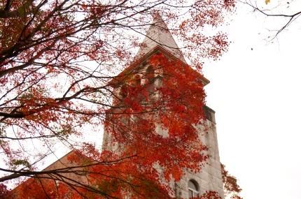 多摩動物公園の紅葉