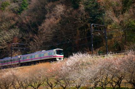 京王電鉄 高尾山口駅付近