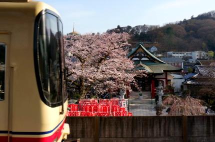 京王線ホームから大光寺