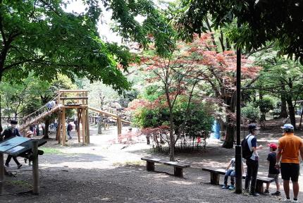 平和の森公園アスレチック