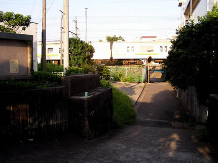 P9030108.jpg